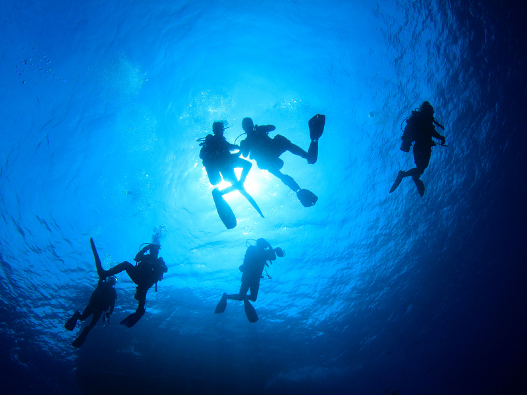 ADVANCED AND SPECIALTY DIVER COURSES